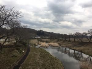 20170406_小野町_夏井千本桜①
