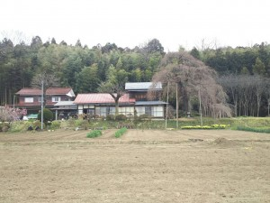 20170406_須賀川市_横田陣屋御殿①