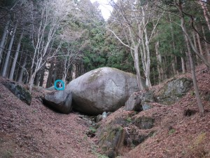 InkedIMG_8934_LI 亀石大きさ比較