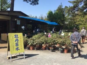 20190504 須賀川牡丹園_190504_0001