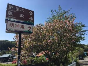 20190519 天栄村 明神滝_190519_0005