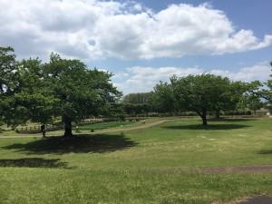 20190519 鏡石町鳥見山公園_190519_0001