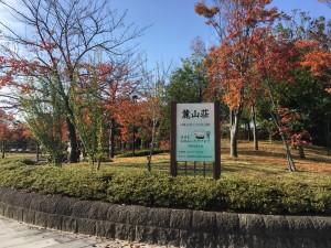 20191031 21世紀記念公園_191031_0001