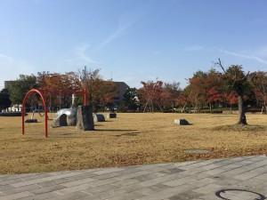 20191031 21世紀記念公園_191031_0003