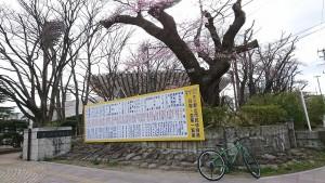 0328開成山公園_200328_0002
