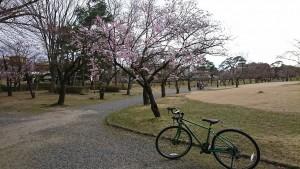 0328開成山公園_200328_0005_0