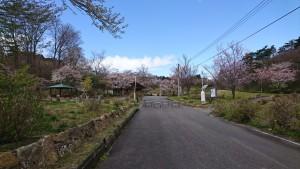 0424山ノ井_200424_0002