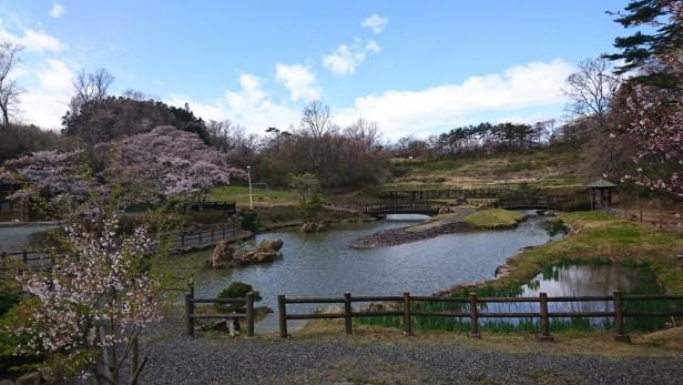 0424山ノ井_200424_0009