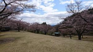 0424逢瀬公園_200424_0013