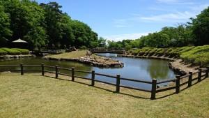 山ノ井公園_200527_0008
