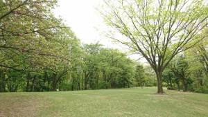 逢瀬公園_200509_0003