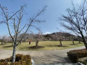 20210331緑ヶ丘公園_210331_2